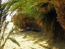 7585 - Yehayo te Ain Khadra in Witte Woestijn - omgeving Farafra