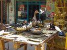 8444 - Vogelmarkt - Cairo
